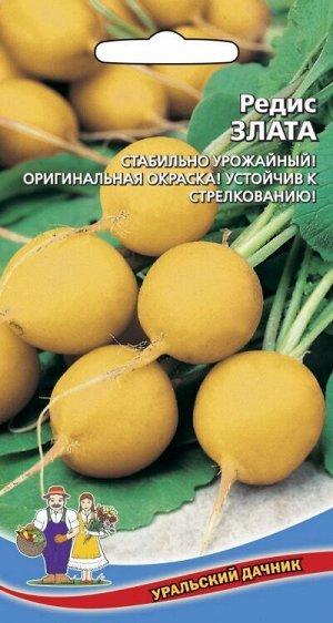 Редис Злата (УД) (средний,округлый,желтый,от 20 до 40 г,мякоть белая,нежная,сочная)