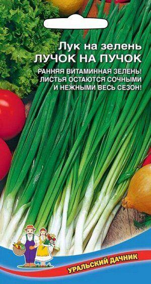 Лук на зелень Лучок на пучок (УД) Новинка!!!