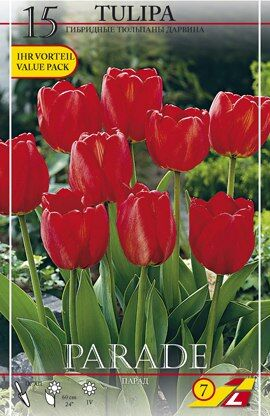 Парад Цена за упаковку В упаковке 15 луковиц Размер 14/+ Цвет: алый