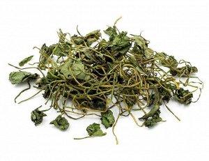 Чай Готу Кола , Центе́лла азиа́тская (Centélla asiática)