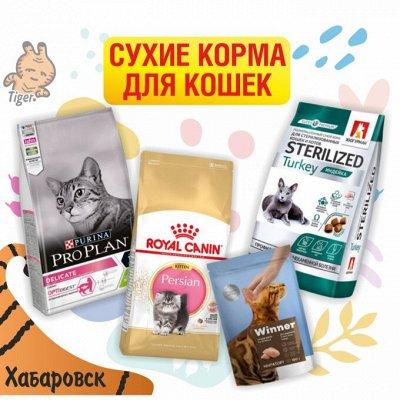С заботой о братьях наших меньших — Сухие корма для кошек
