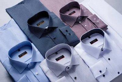 Доставим быстро: рубашки, косметика, творчество — Мужские сорочки