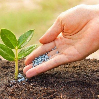 ✔Осенний предзаказ: Луковичные и Саженцы — Агрохимикаты и биопрепараты