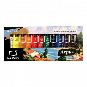 Краска акриловые в тубе, набор 12 цветов по 12 мл «Малевичъ», матовые, в картонной коробке