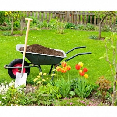 Готовимся к дачному сезону - все для сада и огорода — Тачки, тележки