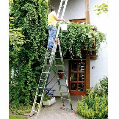 Готовимся к дачному сезону - все для сада и огорода — Лестницы и стремянки для сада