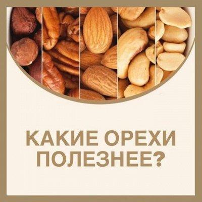 Орехи и Сухофрукты. Правильное и полезное питание — Орехи и здоровье: вред или польза?