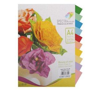 Бумага Spectra Colour A4 250л/пач 80 гр Rainbow (10 цв.*25л.) №859 (1/10) арт. A4 80 859