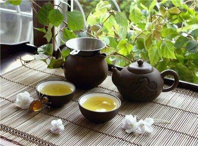 Кофе из Австрии и Нидерландов. Быстрая доставка — Чай из Вьетнама и Тайланда. НОВИНКИ