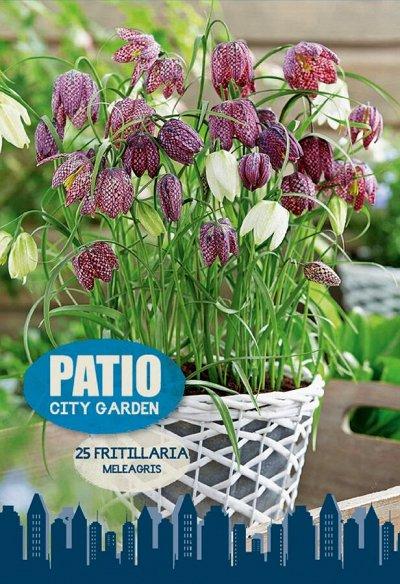 Луковичные на осень-тюльпаны, нарциссы, лилии — Осенние посадки