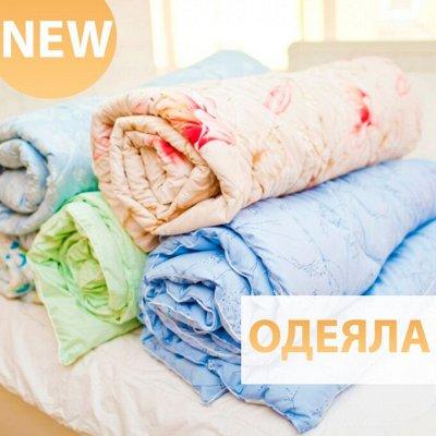 ♚Elite Home♚ Pasabahce — самый полный ассортимент — Одеяла