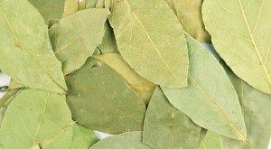 Лист лавровый сухой