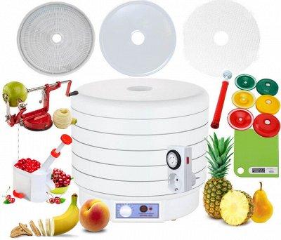 Сушилки для овощей и фруктов ВОЛТЕРА. Улучшайте питание — Электросушилки Волтера