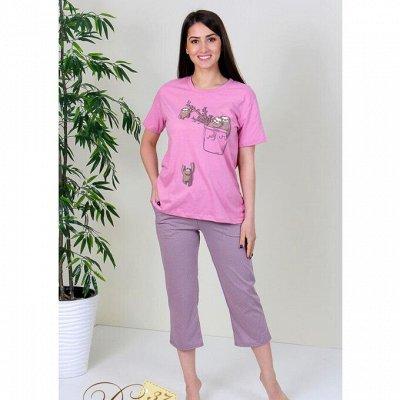 DRESS37 - доверяем трикотажу! От 42 до 66 размера — Костюмы с бриджами
