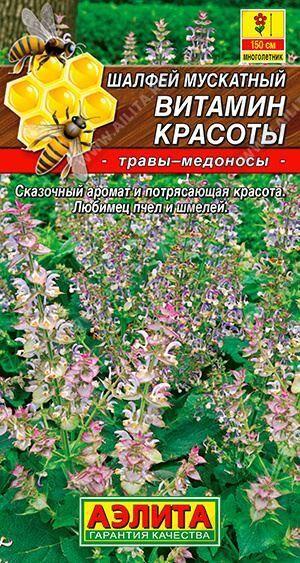 Шалфей Витамин красоты (Код: 88411)