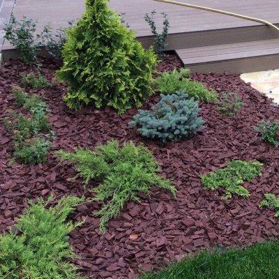 Кора лиственницы - природная мульча для почвы