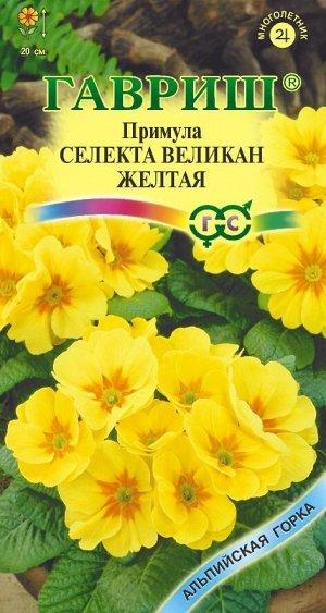 Примула Желтый Великан* 10 шт. серия Альпийская горка