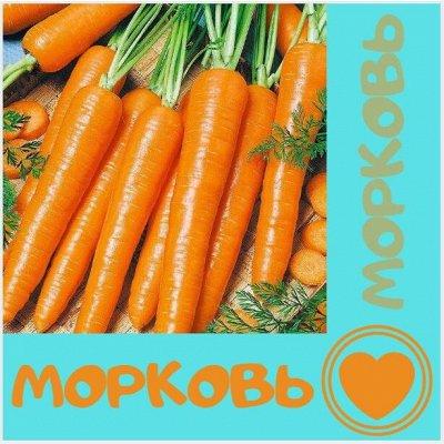 Семена. Большой выбор — Морковь