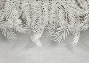 Фотообои Нежный пальмовый занавес