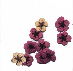 Сухоцветы для дизайна 30