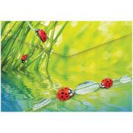 """Папка-конверт на кнопке Berlingo """"Ladybird"""", А4, 180мкм, рисунок"""