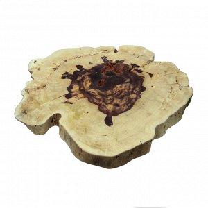 Слэб для декора интерьера из ценных пород дерева Суар 66см-60см-7см 17,4кг
