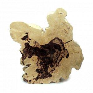 Слэб для декора интерьера из ценных пород дерева Суар 70см-60см-8см 20.6кг
