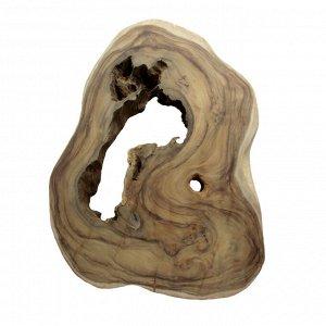 Слэб для декора интерьера из ценных пород дерева Суар 97см-75см-8.5см 18.200кг