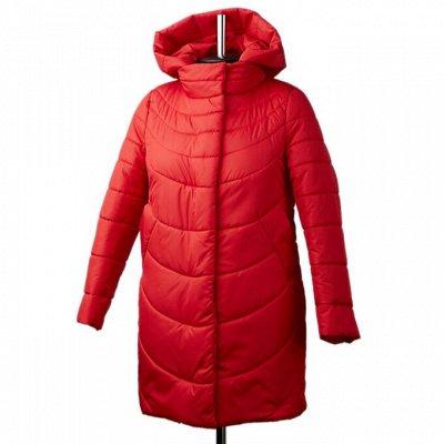 Элегантная верхняя одежда! Закрытие сезона — большие скидки — Куртки, пуховики. Цены снижены