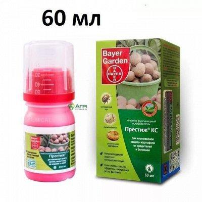 НОвинка! Плантафол 10-54-10 Взрыв цветения — Фунгициды