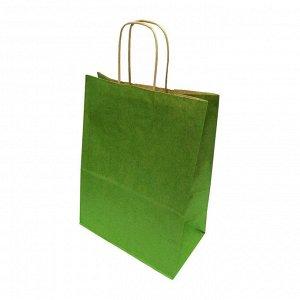 Пакет бумажный с крученой ручкой зеленый размер 26*35*15см 70г/м2