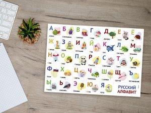 """МАГНИТНЫЙ """"АЛФАВИТ РУССКИЙ NEW"""" 30х20 см (2195)"""