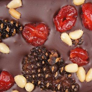 Шоколад с сосновой шишкой, вишней и кедр.орехом 100 гр