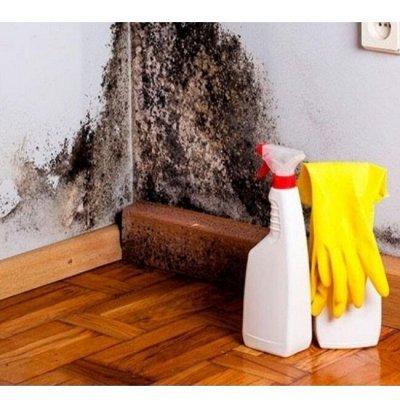 🏠 Все для дома и сада, Отдыха и Уборки — Средства для защиты от грибка и плесени