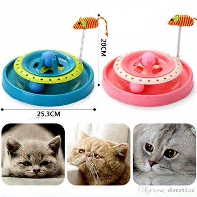 Мурр-маркет! Крутые лежанки Снова в продаже — Игрушки для кошек