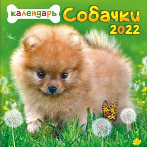 """МАЛЫЙ перекидной настенный календарь на скрепке на 2022 год """"Собаки"""""""