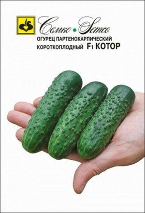ТМ Семко Огурец партенокарпический Котор F1/ гибриды с длиной плодов 6-12 см