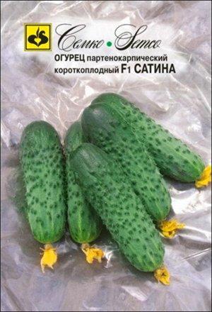 ТМ Семко Огурец партенокарпический Сатина F1/ гибриды с длиной плодов 6-12 см