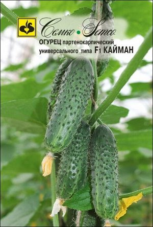 ТМ Семко Огурец партенокарпический Кайман F1/ гибриды с длиной плодов 6-12 см