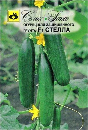 ТМ Семко Огурец партенокарпический Стелла F1/ гибриды с длиной плодов 12-24 см