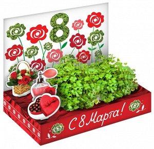 Подарочный набор 8 Марта №2 Розы