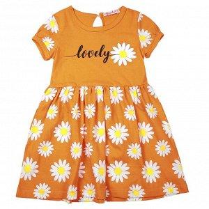 Платье для девочки оранжевый
