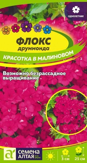 Флокс Красотка в малиновом Друммонда/Сем Алт/цп 0,1 гр.