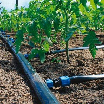 Лучший огород-дача. Подвязки, освещение, парники, удобрения — Капельный полив