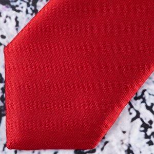 Галстук Цвет: красный. Комплектация: галстук. Состав: микрофибра-100%. Бренд: Roberto Gabbani. Длина, см: 45. Ширина, см: 6. Фактура: однотонная.