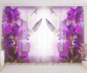 Фототюль Фиолетовый цветок в росе
