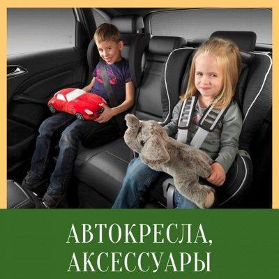Gerdavlad. Летние новинки игрушек и спортивных товаров — Автокресла, автонаклейки