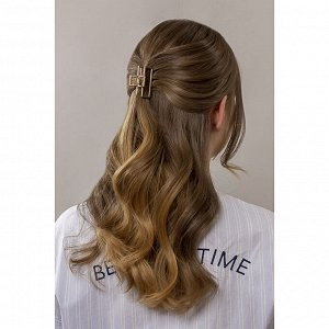 BERIOTTI Краб для волос, металл, пластик, 5см, 2 дизайна, 4426-9