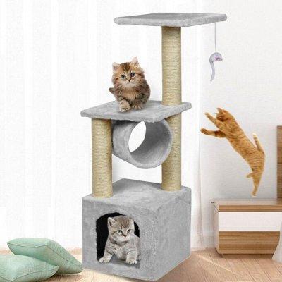 Кошкин дом🐱: сюрприз для киски — Комплексы с домом для кошек