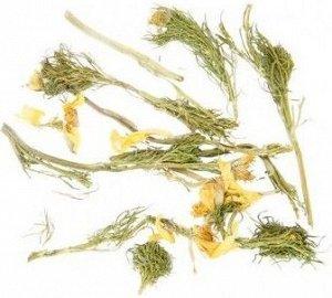 Адонис весенний (трава и цветы)
